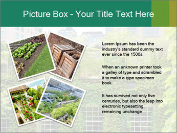 Green house PowerPoint Template - Slide 23