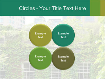 Green house PowerPoint Template - Slide 38
