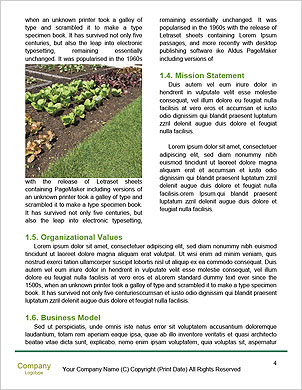 0000088752 Word Template - Page 4