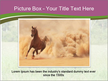 Horses PowerPoint Template - Slide 15