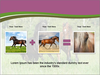 Horses PowerPoint Template - Slide 22