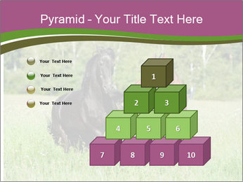 Horses PowerPoint Template - Slide 31