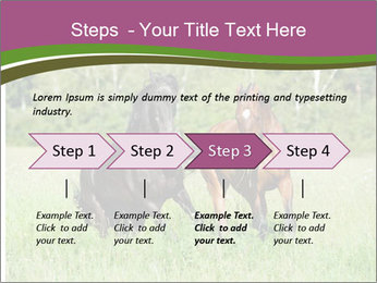 Horses PowerPoint Template - Slide 4
