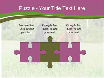 Horses PowerPoint Template - Slide 42