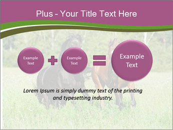 Horses PowerPoint Template - Slide 75