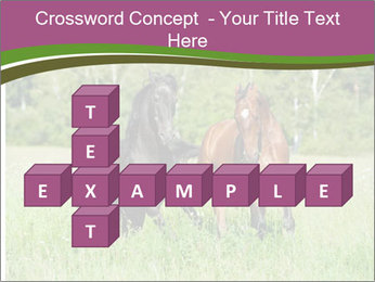 Horses PowerPoint Template - Slide 82