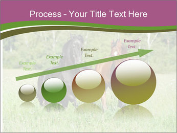 Horses PowerPoint Template - Slide 87