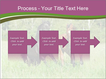 Horses PowerPoint Template - Slide 88