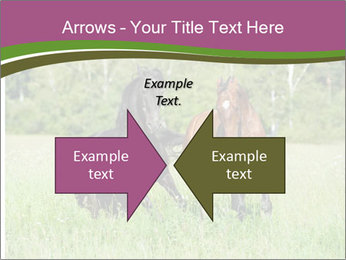 Horses PowerPoint Template - Slide 90