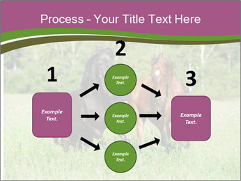 Horses PowerPoint Template - Slide 92