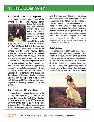 0000088755 Word Template - Page 3