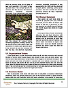 0000088755 Word Template - Page 4