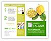 0000088756 Brochure Templates