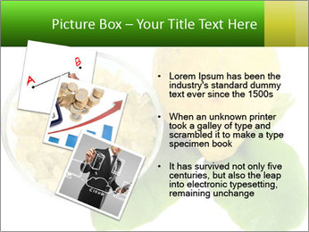 Citrus PowerPoint Template - Slide 17