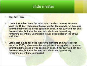 Citrus PowerPoint Template - Slide 2