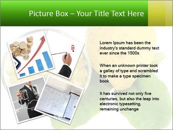 Citrus PowerPoint Template - Slide 23