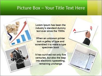 Citrus PowerPoint Template - Slide 24