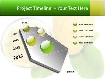 Citrus PowerPoint Template - Slide 26