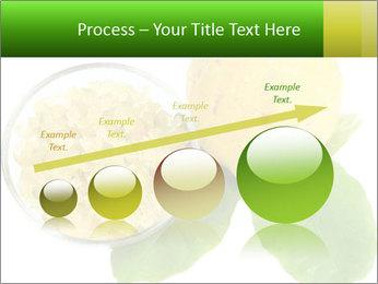 Citrus PowerPoint Template - Slide 87