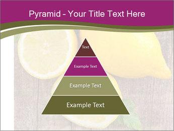 Lemon PowerPoint Templates - Slide 30