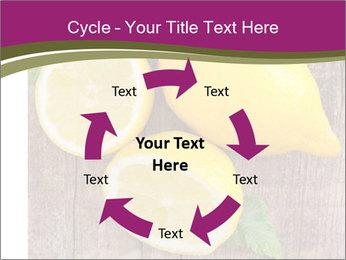 Lemon PowerPoint Templates - Slide 62