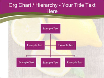 Lemon PowerPoint Templates - Slide 66