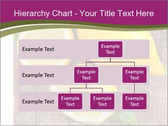 Lemon PowerPoint Templates - Slide 67