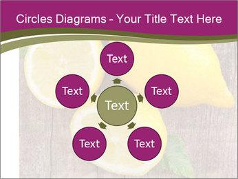 Lemon PowerPoint Templates - Slide 78