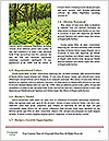 0000088765 Word Template - Page 4