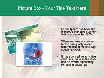 Drawing organs PowerPoint Template - Slide 20