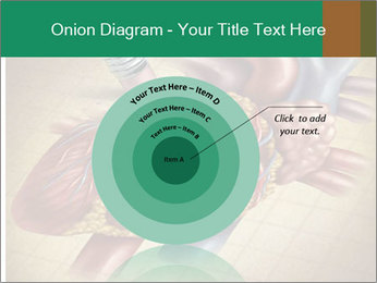 Drawing organs PowerPoint Template - Slide 61