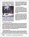 0000088782 Word Templates - Page 4