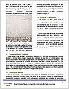 0000088785 Word Template - Page 4