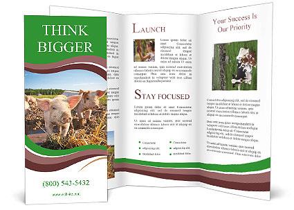 0000088786 Brochure Template