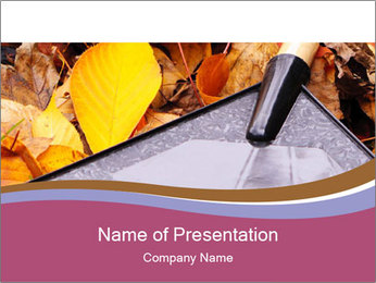 Autumn leaves PowerPoint Templates - Slide 1