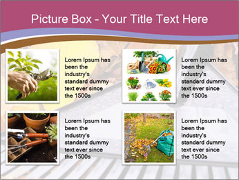 Autumn leaves PowerPoint Template - Slide 14