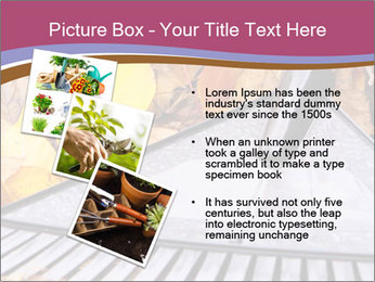Autumn leaves PowerPoint Template - Slide 17