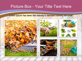Autumn leaves PowerPoint Templates - Slide 19
