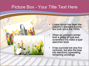Autumn leaves PowerPoint Template - Slide 20