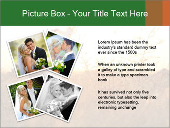 Newlyweds in the field PowerPoint Template - Slide 23