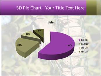 Bird feeders PowerPoint Templates - Slide 35