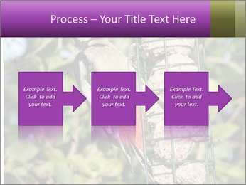 Bird feeders PowerPoint Templates - Slide 88