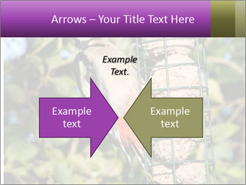 Bird feeders PowerPoint Templates - Slide 90