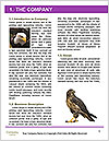 0000088803 Word Templates - Page 3
