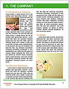 0000088804 Word Templates - Page 3