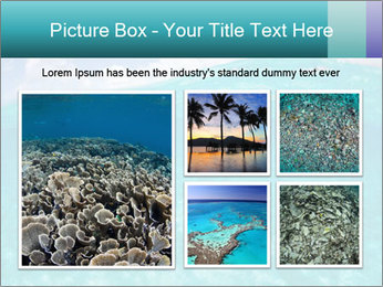 Crystal clear sea PowerPoint Template - Slide 19