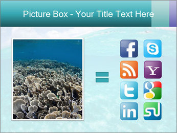 Crystal clear sea PowerPoint Template - Slide 21