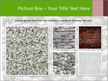 Beach Stones PowerPoint Template - Slide 19
