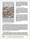 0000088819 Word Template - Page 4