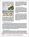 0000088823 Word Templates - Page 4